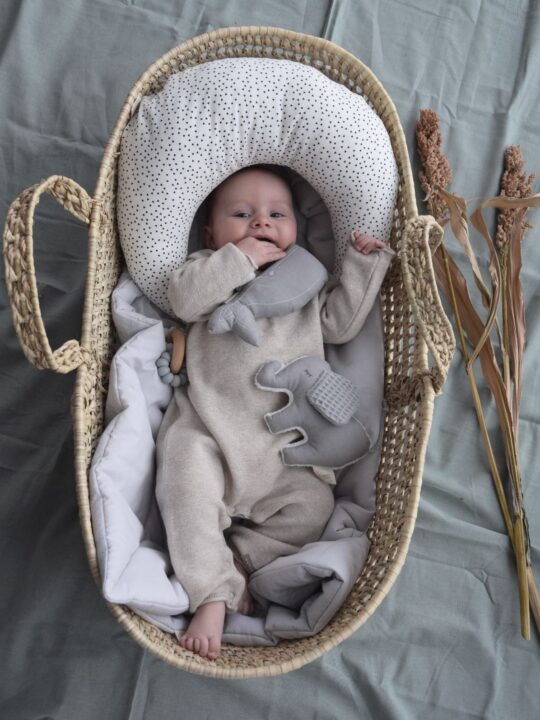 Baby im Korb mit Mondkissen